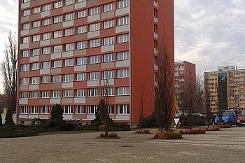 Politechnika Świętokrzyska : DS ASYSTENT